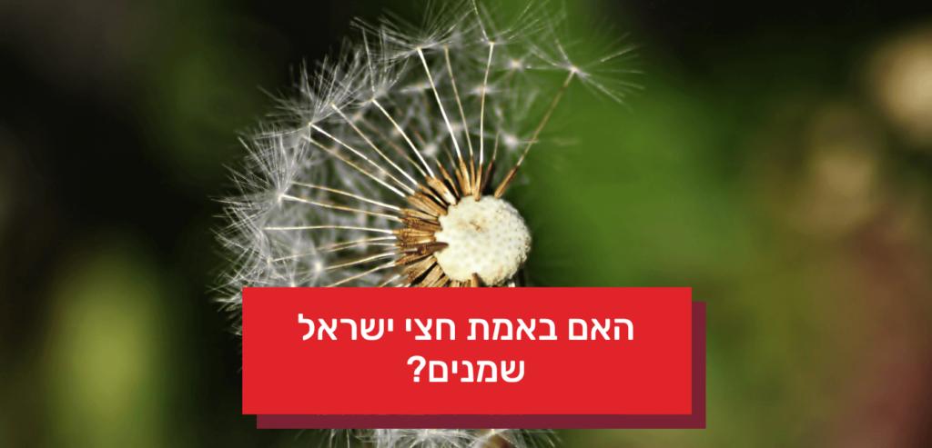 האם באמת חצי ישראל שמנים